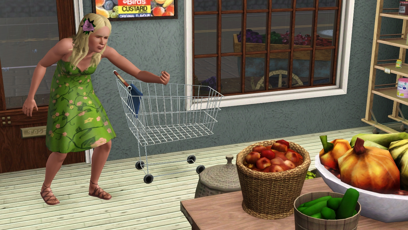 Crumpleton: Meadow's Grocery | Sims in the Woods